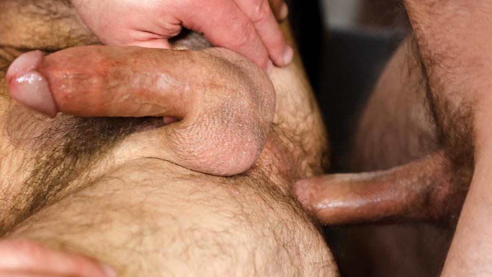 Actores Porno Gay Brasil sensually raw gay get togetherjake morgan, liam greer